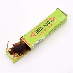 엽기벌레-껌