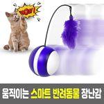 자동으로 움직이는 리얼 운동자극 고양이 장난감