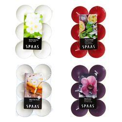 티라이트 향초 12개 플랫팩 SPAAS
