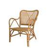 stella rattan arm chair(스텔라 라탄 암체어)