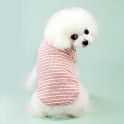 강아지 스프라이트 줄무늬 티셔츠 핑크 그레이 민트 3컬러
