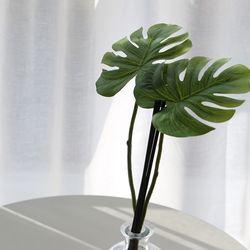 리베르 몬스테라 2잎 조화