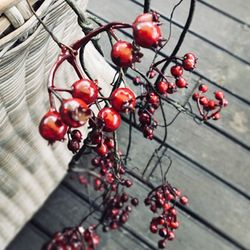 찔레열매 넝쿨 조화(2color)