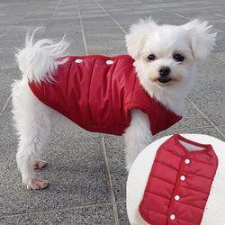 클래식 조끼패딩 강아지패딩 강아지겨울옷 애견산책룩