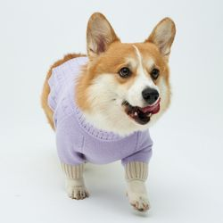 Lavender Cheez Cashmere Knit 중형견 - L 2L 3L Size