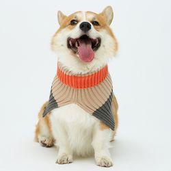 Orange Cheez Neck Warmer 중형견 - M Size