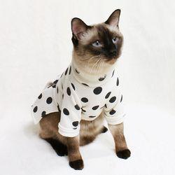 [CAT] 몽페레 플러피 도트원피스 (Milk Cream)