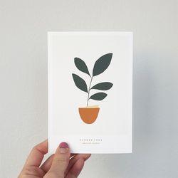 고무나무 미니멀 식물 일러스트 엽서