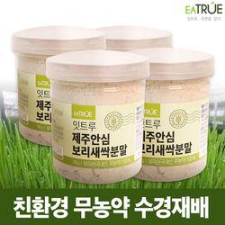잇트루 제주안심 보리새싹분말 180g 4박스  친환경 무농약