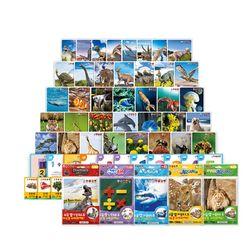 도서출판아들과딸 5개국어AR카드 시리즈 옵션선택