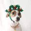 크리스마스트리 열매 머리띠 고양이 강아지 모자 코스튬 Miyopet