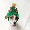 크리스마스트리 머리띠 고양이 강아지 모자 코스튬 Miyopet