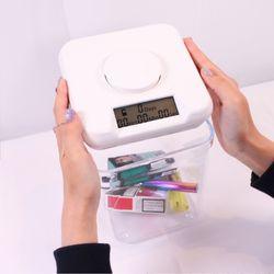 미국 정품 K-SAFE ABSTINENCE BOX 금욕상자 M