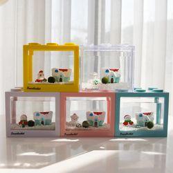 국산 마리모 키우기 겨울왕국 DIY 세트-마리모(대)