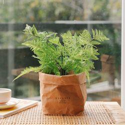푸엘라 고사리 미니조화나무-실내인테리어조화식물화분인조나무