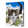 [명화그리기]2030 미니동물-하얀 들꽃 고양이 15색 일러스트