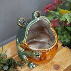 입큰 개구리