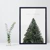 A3 크리스마스 트리 장식 포스터 - 소호프레임(+LED와이어전구)
