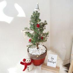 가문비나무 레드화분(크리스마스데코 추가)