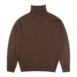 BASIC OVERFIT POLAR NECK (BROWN)