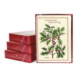 Cavallini 크리스마스 카드세트 Christmas Holly