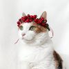 크리스마스 열매 리스 화관 머리띠 고양이 강아지 옷