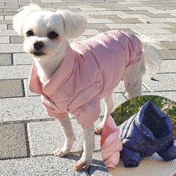 클래식 강아지 경량패딩 바람막이 외투 강아지겨울옷