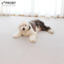 12T 펫플레이 PVC 강아지 애견매트 100x150 그린