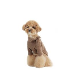 Side Button Turtleneck - Brown