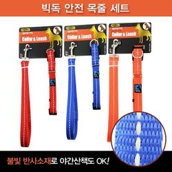 빅독 안전 목줄세트(대)20mm