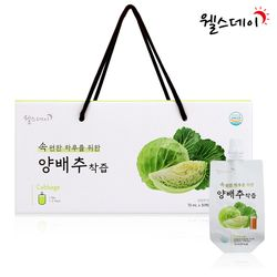 [무료배송] 웰스데이 양배추착즙 (70ml 30포)