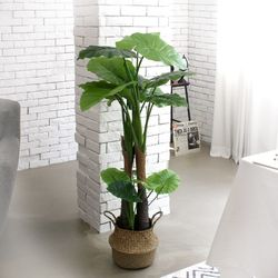 인테리어조화 인조나무 조화화분 2단 알로카시아 120