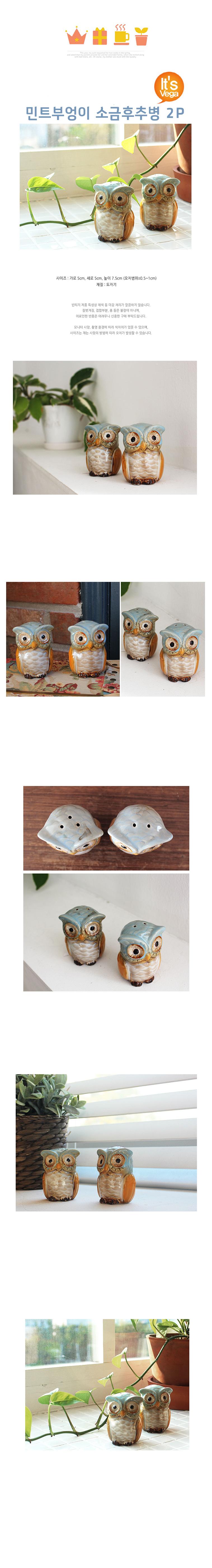 민트부엉이 소금후추병 2P - 베가, 12,000원, 밀폐/보관용기, 양념통/오일통