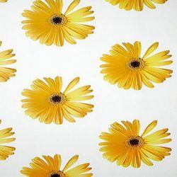 꽃무늬시트 AO-41 서니플라워 (1M)