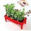 실내 미니화단 만들기 - 인테리어 원목화분 우드래더 (공기정화식물)