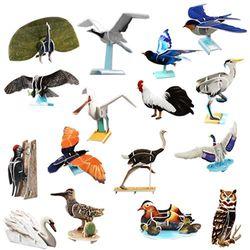 교과서에 나오는 세계의 새들