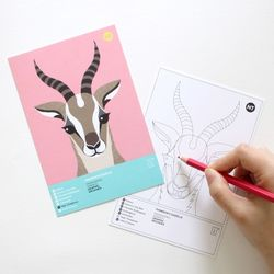 톰슨가젤 멸종위기동물 컬러링 엽서 2in1
