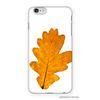 보타니컬 노란 가을 나뭇잎 아이폰 케이스 AAE406