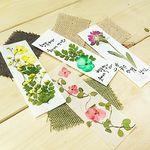 꽃보듬(압화) 한지 책갈피 만들기 KIT