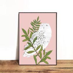 OWL 01 [330x430mm]