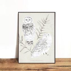 OWL 02 [330x430mm]