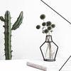 Nude Vase (H145) + Glass Vase