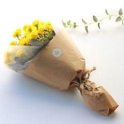 러블리 카네이션 꽃다발-6color