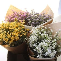 빈티지 리얼별꽃 꽃다발-4color