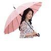 비가오면 꽃이 피는 16K 사쿠라자동장우산