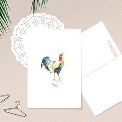 닭 일러스트 엽서