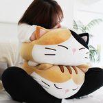 모찌모찌 까망군 고양이쿠션 M