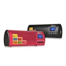 애니클리어 휴대용 효도용 라디오 스피커 BT-R10