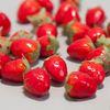 미니 딸기(1cm-100개)
