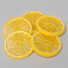 슬라이스 레몬(5개)